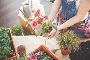 Gør din have forårsklar