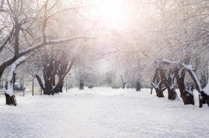 Gå vintermånederne i møde med et vækkeur med lys